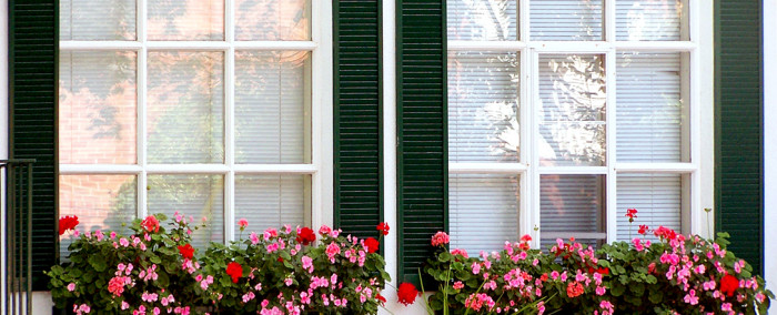 Windows with flowers, rapid glass home glass window repair and replacement